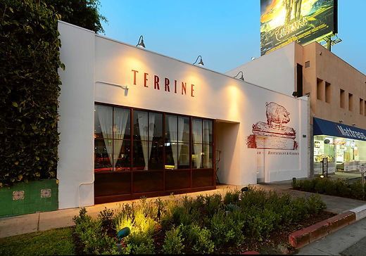 Terrine 01.jpg