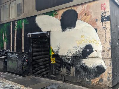 Giant Panda by James Klinge