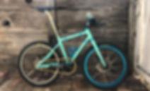 Mini Bike.JPG