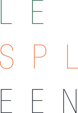 Le_Spleen_logo_couleur (1).png