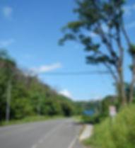 Crazu.net-Monkey-Bridge-3.jpg