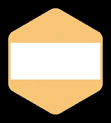 PWD_logo_med _blank.png