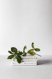 Böcker och gren
