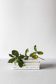 Bøker og grener