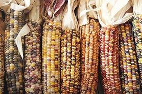 Peeled Corn