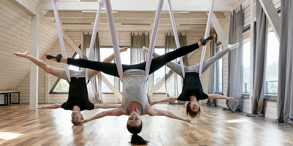 Aerial & Yoga Wall Instructors Course
