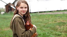 Penn State Extension educator: Love your chickens, but please don't kiss them