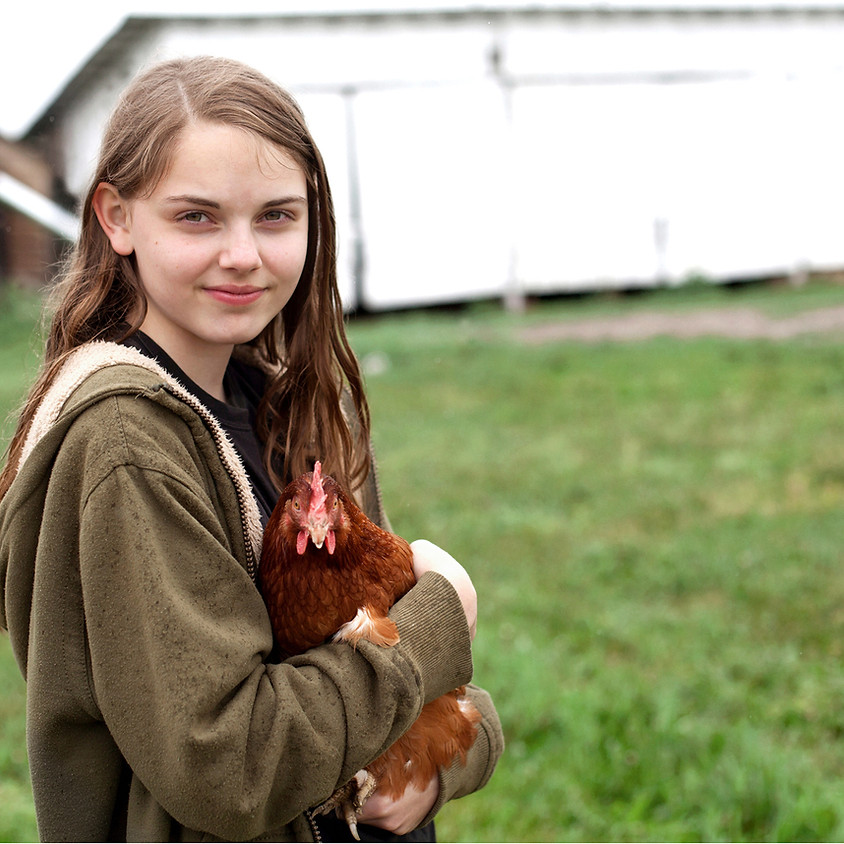 Enriching your poultry during the Avian Influenza housing order