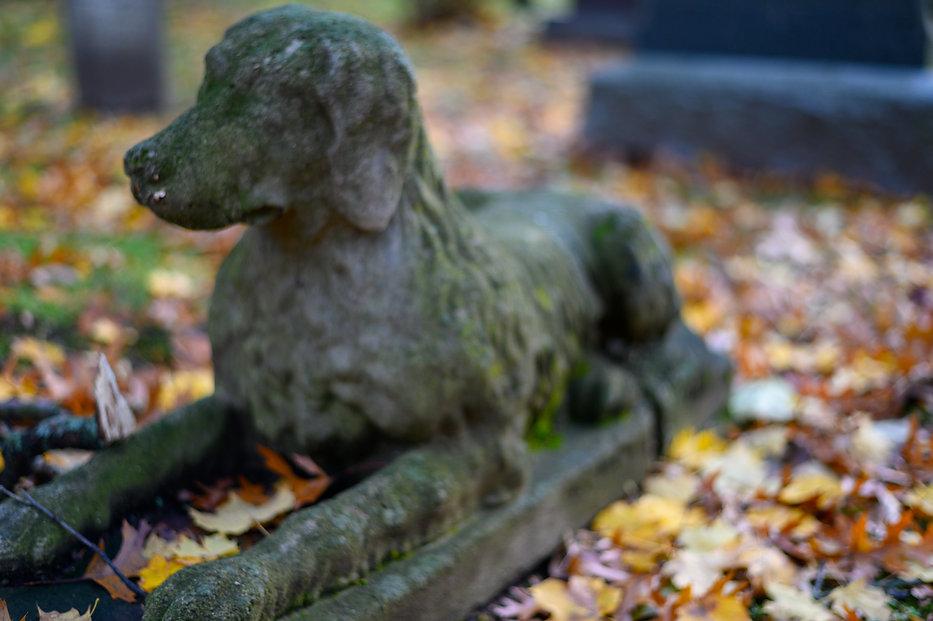 Pet Statue