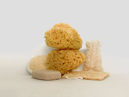 Are You Dry Skin Brushing?