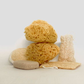 Loofahs! Yes, Maybe, No?