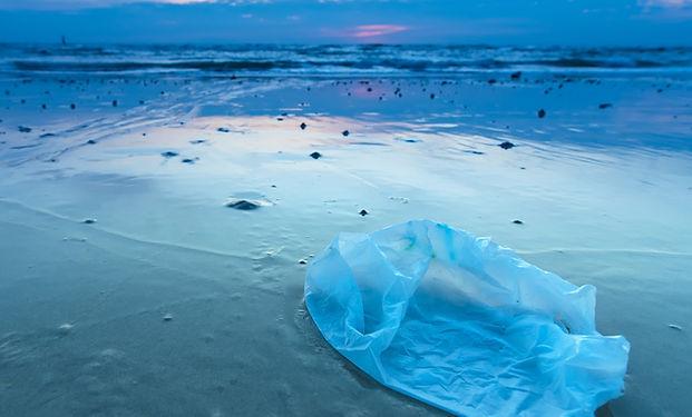 Plastic Bag on Beach