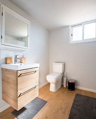 Renovated Basement Bathroom