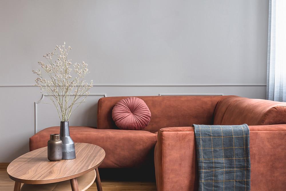 A Clean Sofa is a Cozy Sofa!