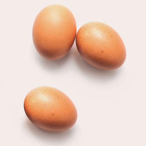 1 dozen fertile eggs