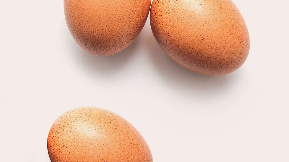 Hatching eggs - 1 dozen / Local pickup