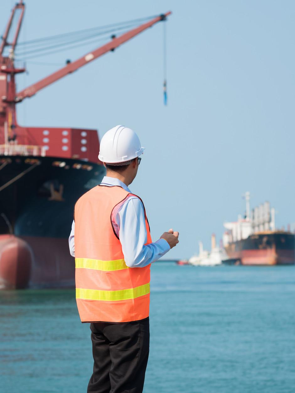 """- Desembaraço aduaneiro de cargas (marítimo e aéreo);  - Logística """"door-to-door"""", com gerenciamento total ou parcial;  - Análise documental;  - Análise de cústos;  - Análise de benefícios tributários;  - Estudo de viabilidade;  - Entreposto aduaneiro;  - Drawback;  - Assessoria em legislação aduaneira;  - Classificação fiscal;"""
