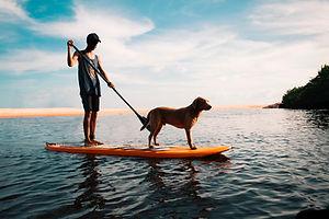 Homem e cachorro na prancha