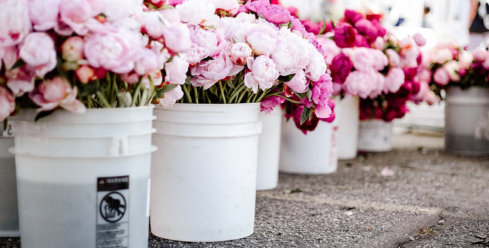 DIY Bucket of Blooms