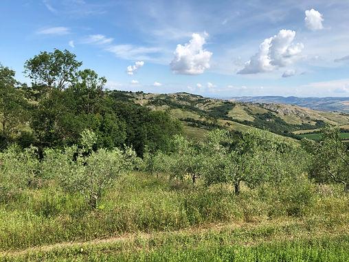 Terreno Edificabile con progetto approvato Sud Sardegna
