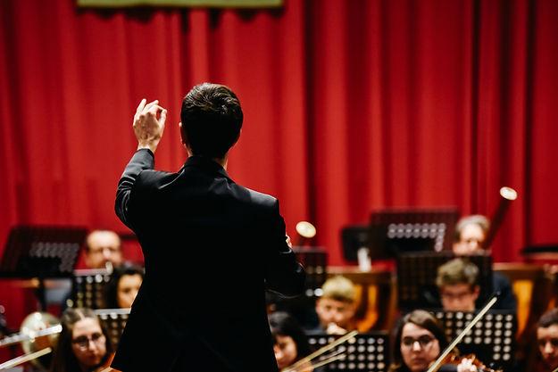 Conductor(a) de música
