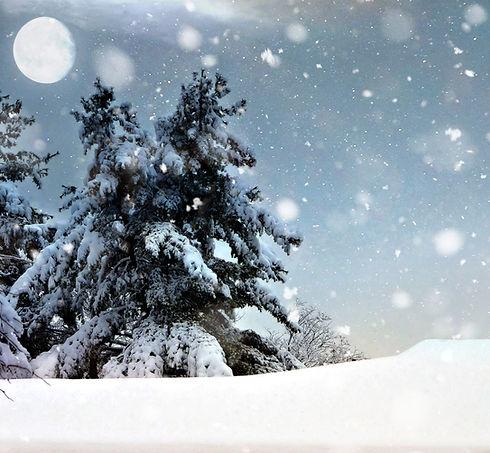 Schneebedeckte Nacht