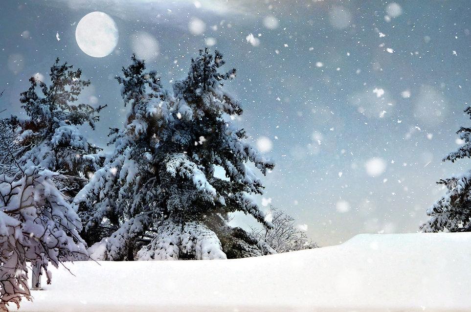 Noche nevada