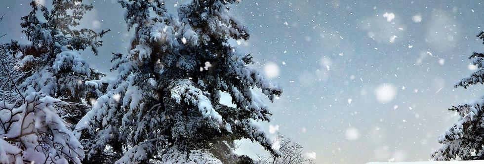 Winter Semester 2021 - Family 30 min