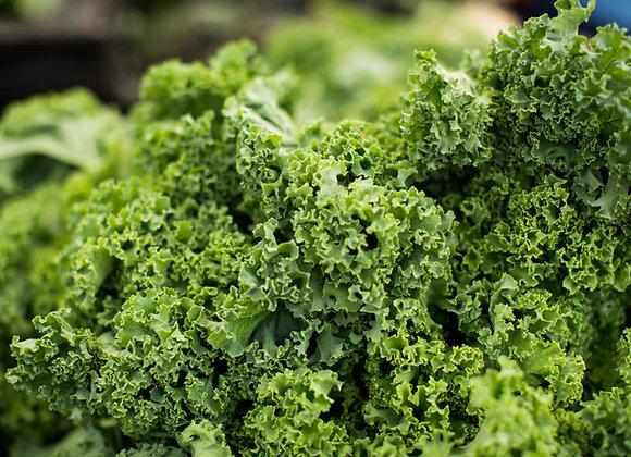 Kale, Curly (bag)