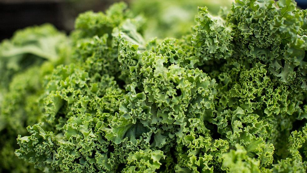 Bundle of Kale