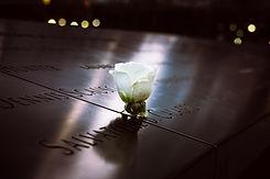 Fellner Blumen weiße Gedenkrose