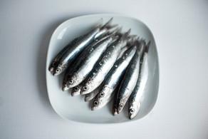 Conseils diététiques : la sardine.