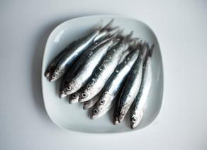 Les Sardines ou comment consommer cet aliment santé ?