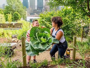 jardín comunitario
