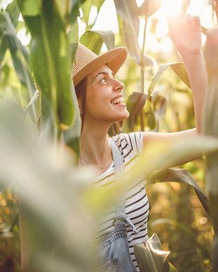 Kvinna i majsfält