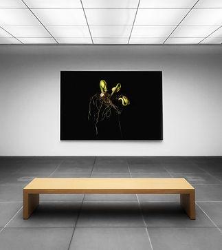 Kunst-Anzeige