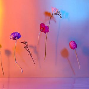 Drijvende bloemen