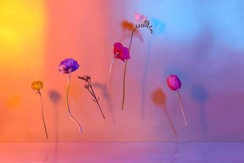 Zwevende bloemen