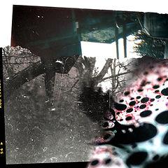 Collage de réflexion