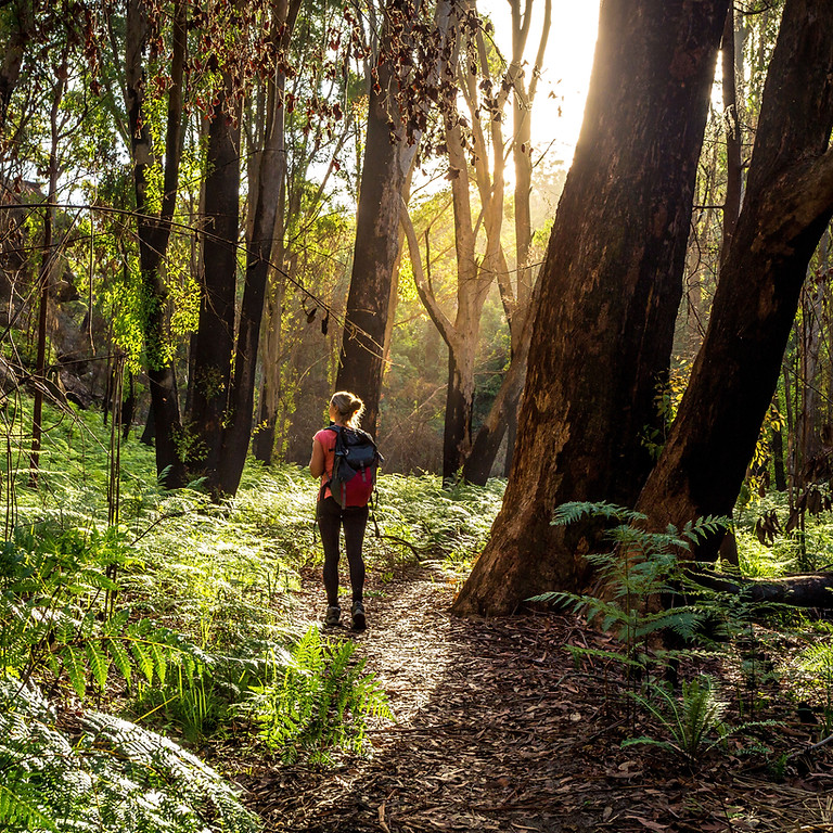 Women's Group: Hiking for Mental Health