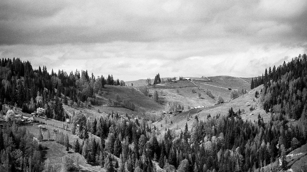 Negro y el paisaje blanco