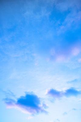 Cielo celeste