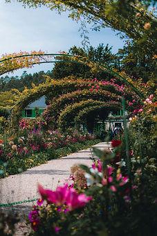 Allée fleurie dans le jardin