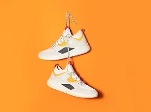 Hanging Sneakers
