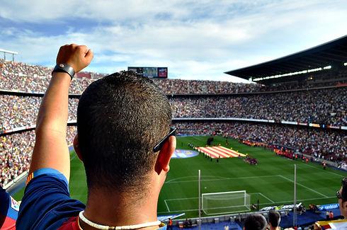 スタジアムで応援ファン