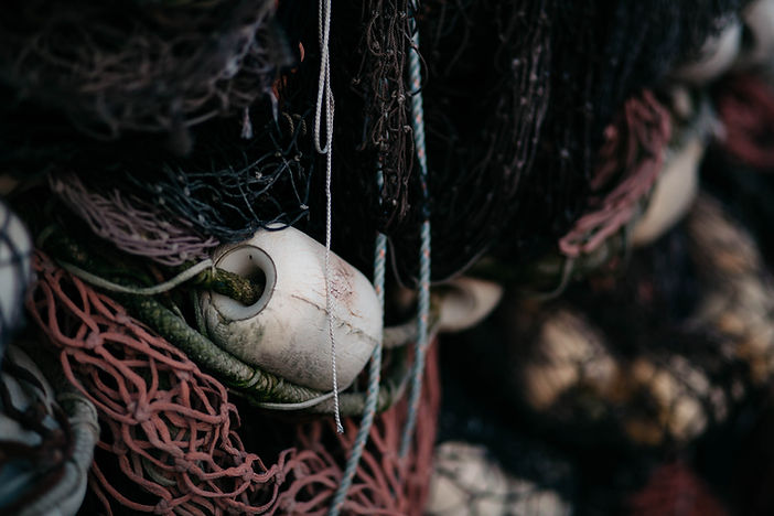 Fishing Net Closeup
