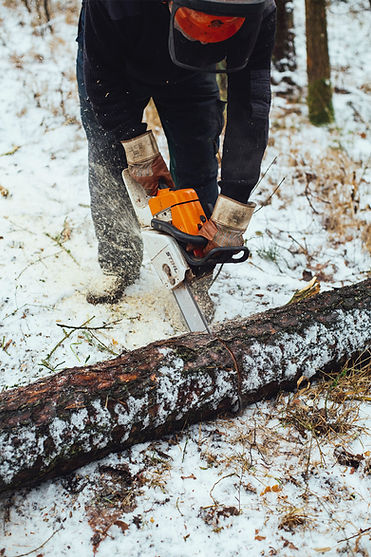 Дровосек режет дерево