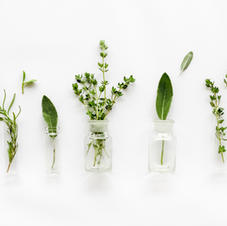 Herbalism for the Workplace