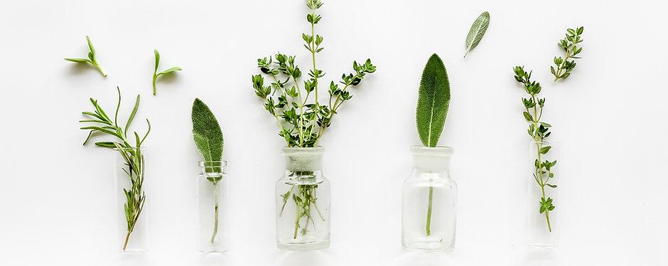 Herbal Database