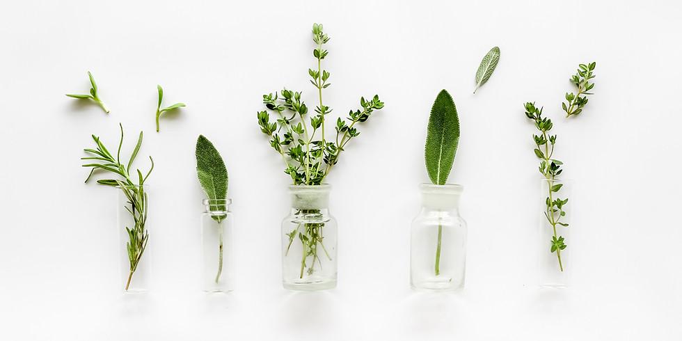 Botanical Perfumes, Pt 1: Herbal Aromas